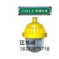 供应海洋王BPC8720防爆平台灯/海洋王室内室外防爆照明灯